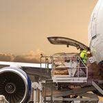 管理软件 / 控制 / 货运飞机