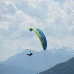 性能滑翔伞 / 单座