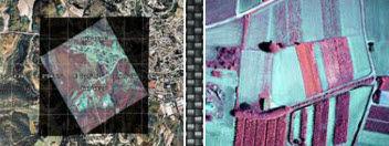 控制软件 / 图像分析 / 无人机 / 实时