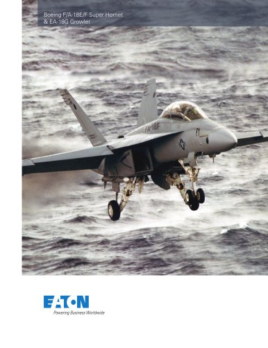 Boeing F/A-18E/F Super Hornet & EA-18G Growler